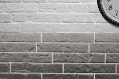 Brick-5x25-STEEL